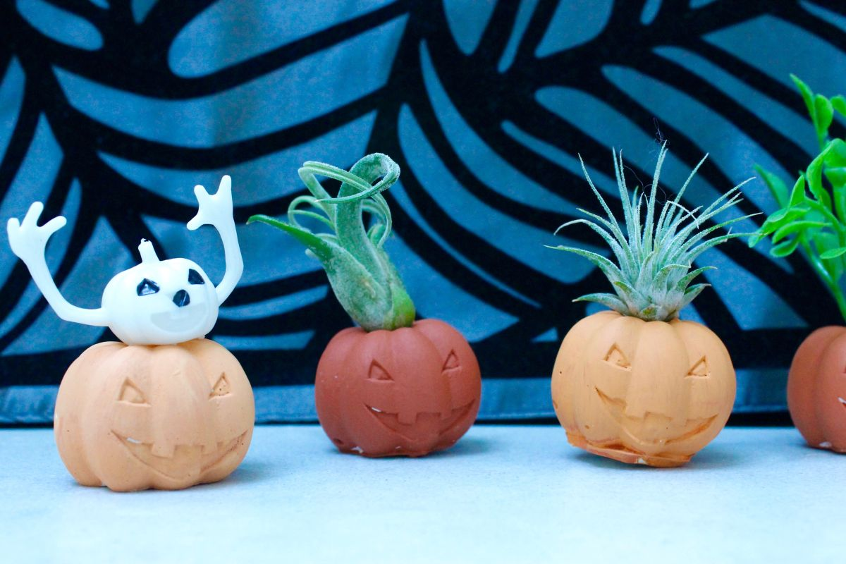 Funny Halloween Pumpkin Air Plant Holders