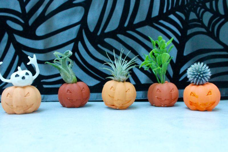 DIY Halloween Pumpkin Air Plant Holders