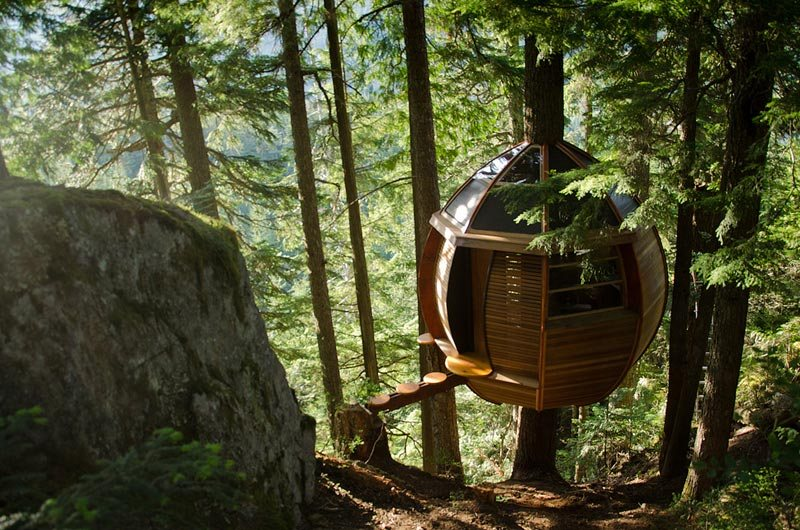 Hemloft treehouse in the woods