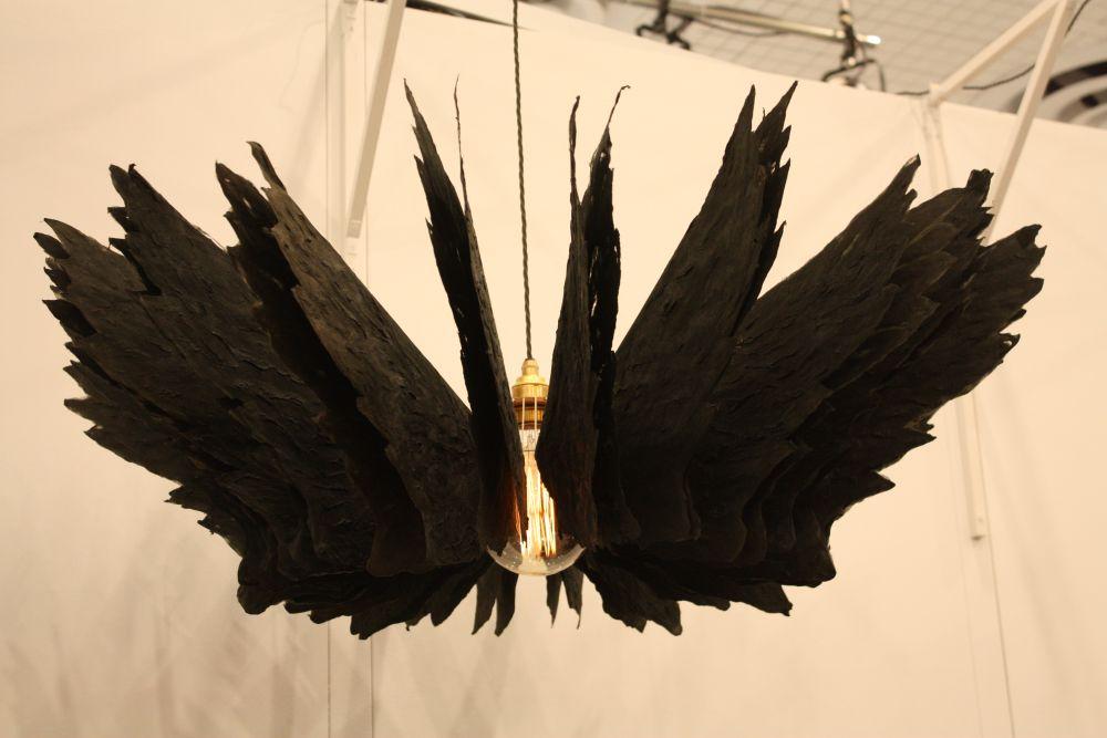 Latorre cruz bird