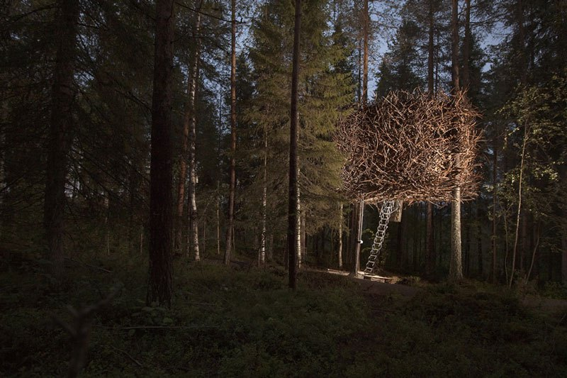 Sweden tree hotel birds nest room