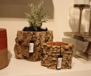 Accent Decor Offers Bark Pots In Diffe Sizes