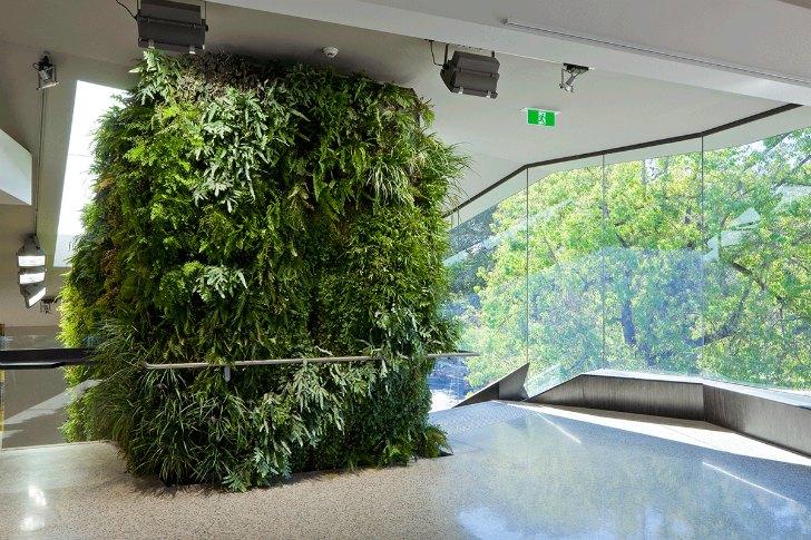 Adelaide Zoo Entrance Boasts Living Walls