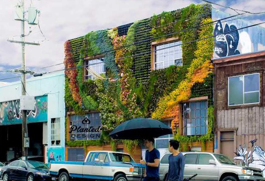 Building Living wall on San Francisco