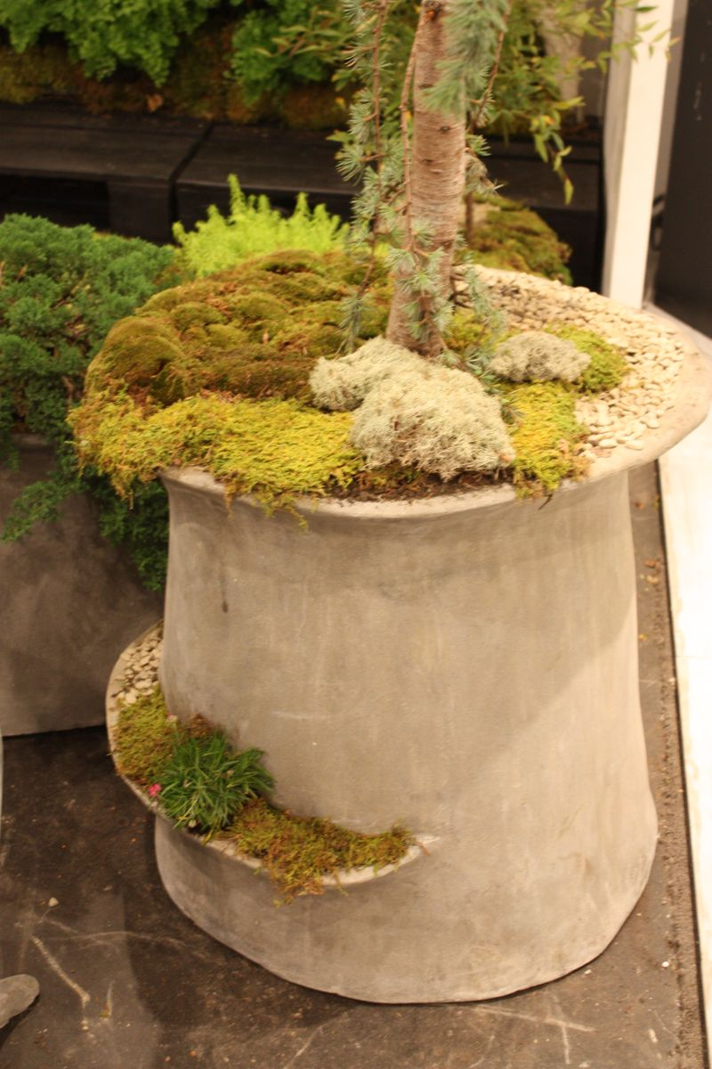 Concrete planters for curb appeal