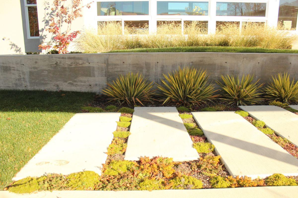Concrete slabs that mimic the front steps