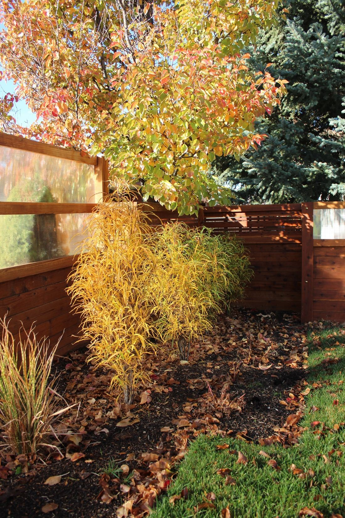Curb Appeal - remove the fallen leaves