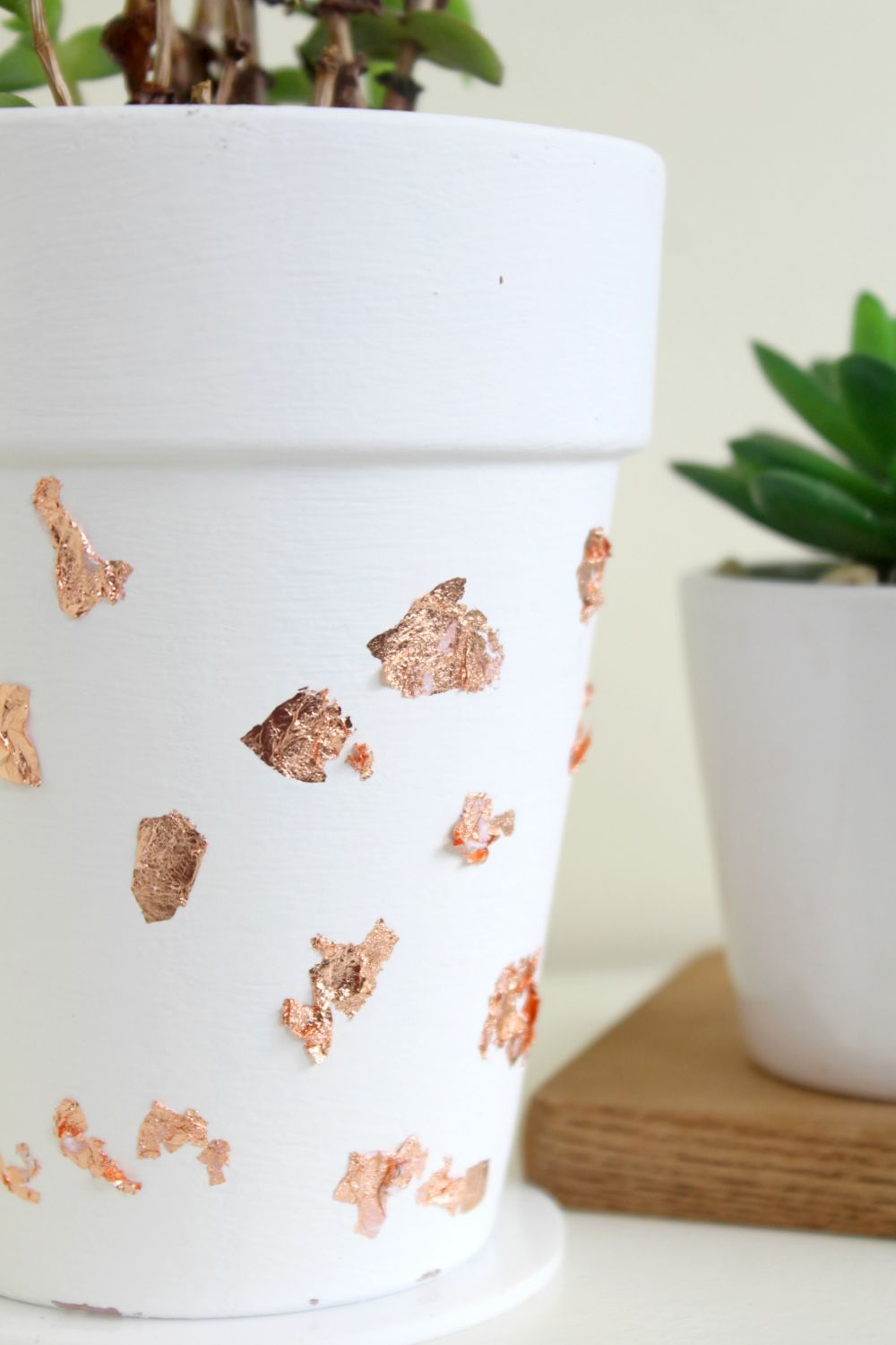 DIY Copper Foil Planter Display