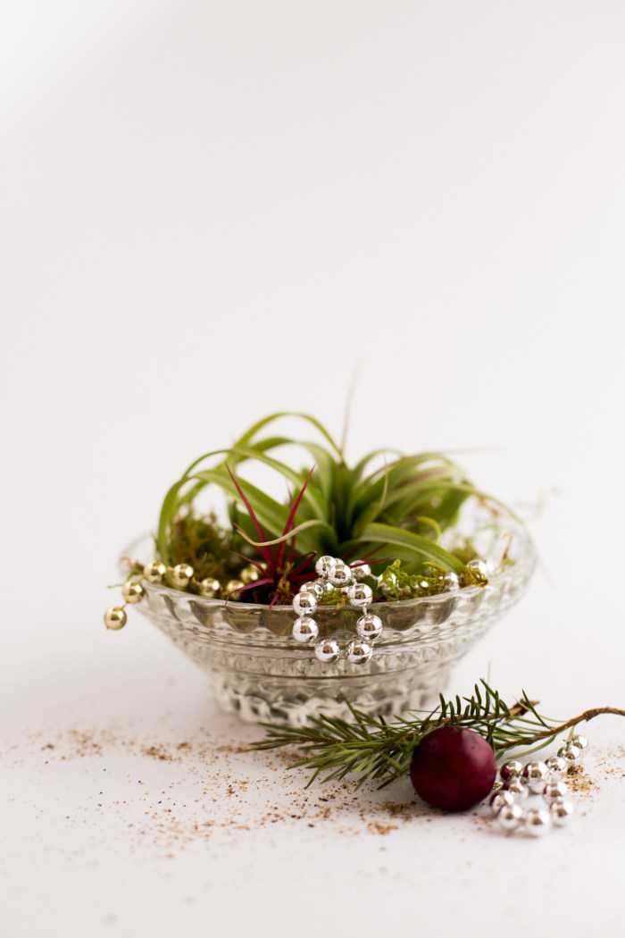 Diy Ari plants Christmas Ornaments