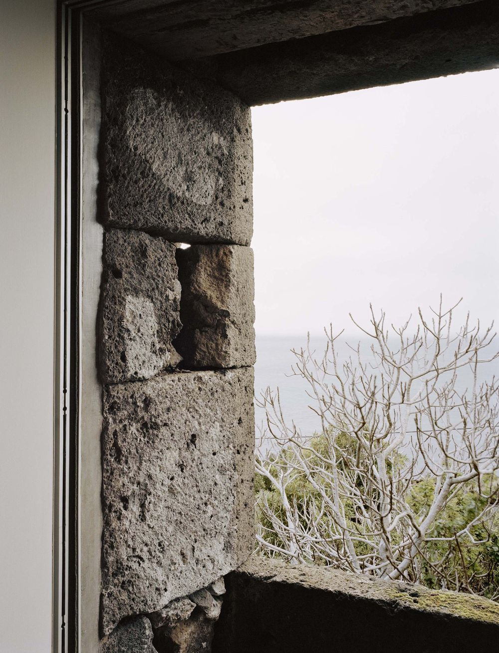 E-C House from SAMI-arquitectos Window