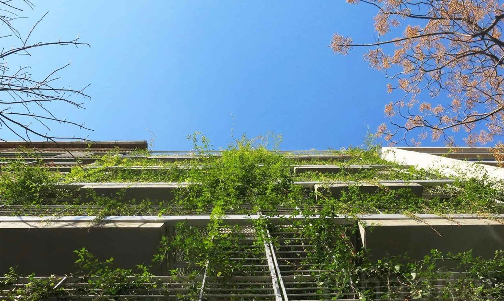 Facade Mario Cito LEED Seeking Palo Santo Hotel Buenos Aires