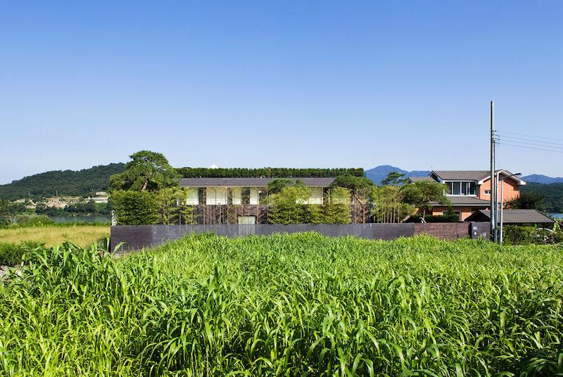 Floating House greenery