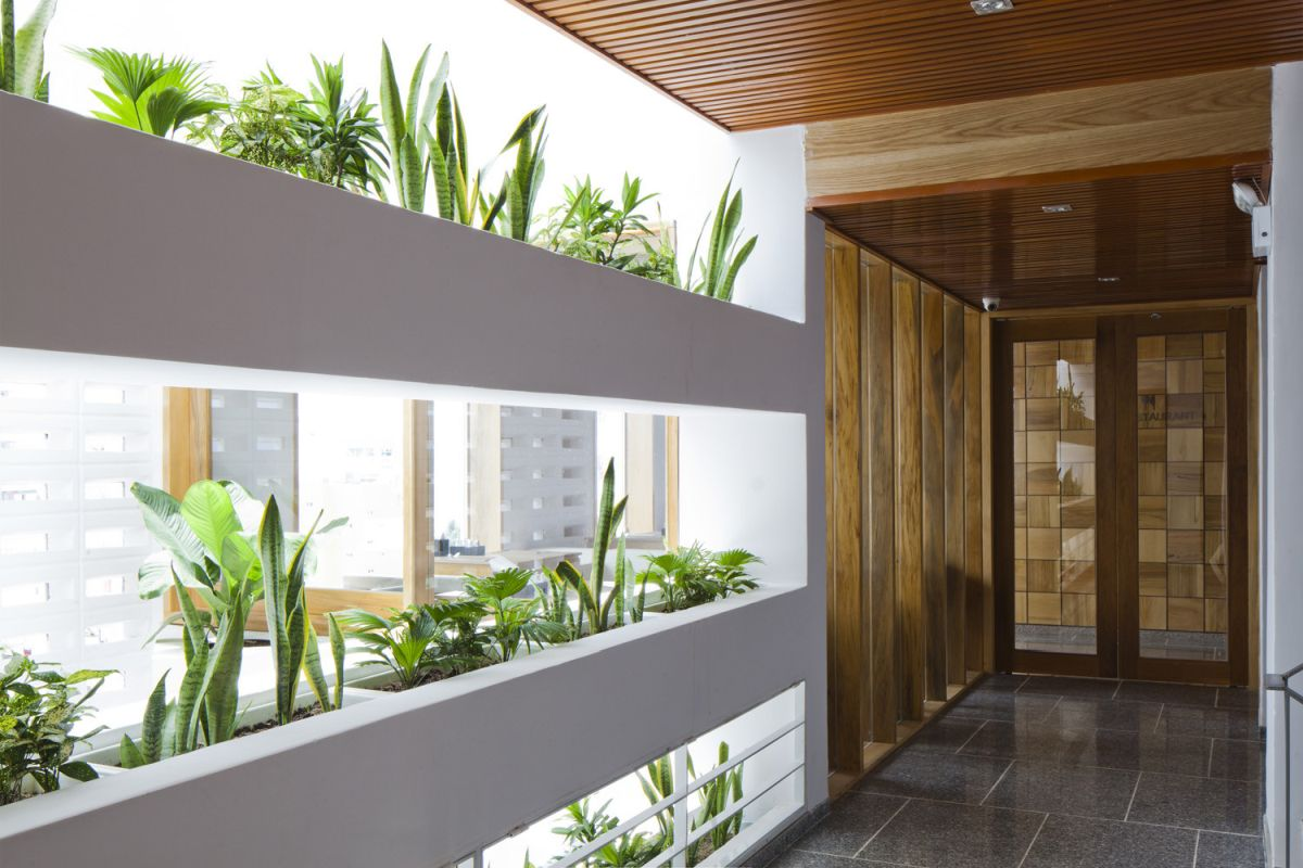 Golden Holiday hotel Plants