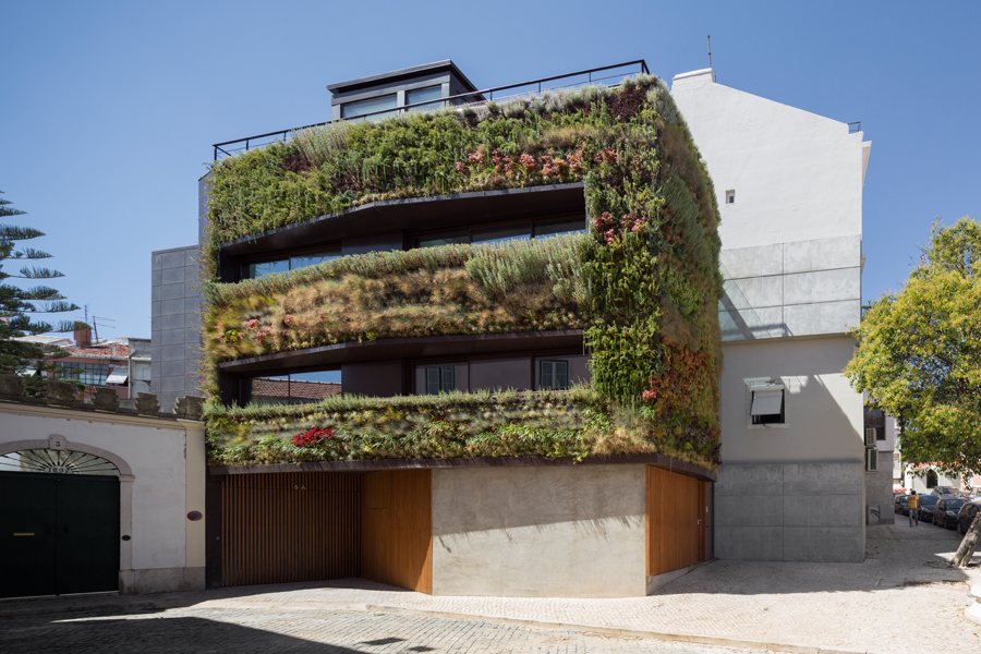 House in Traversa with Vertical Garden Plants Facade