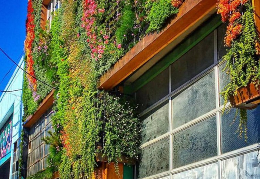 Living wall on San Francisco Closeer