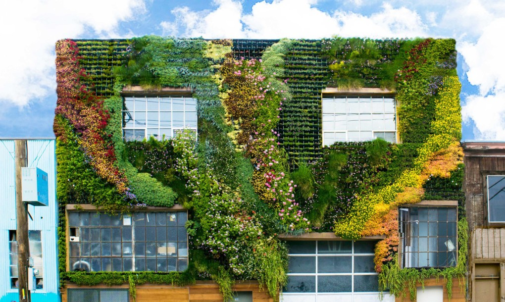 Living wall on San Francisco