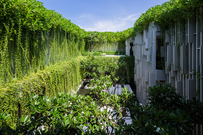 New Resort Spa Is Covered In Hanging Gardens Interior