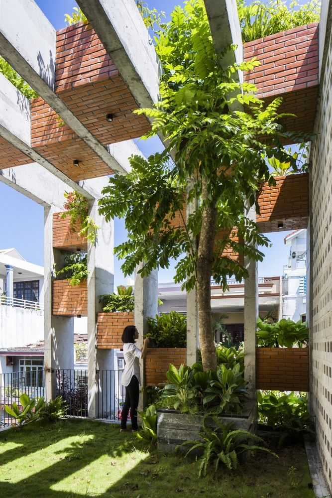 Resort in House from ALPES Green Design & Build Tree