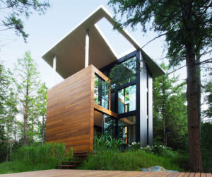 A Sculptor's Home With Roots In The Forest That Surrounds It
