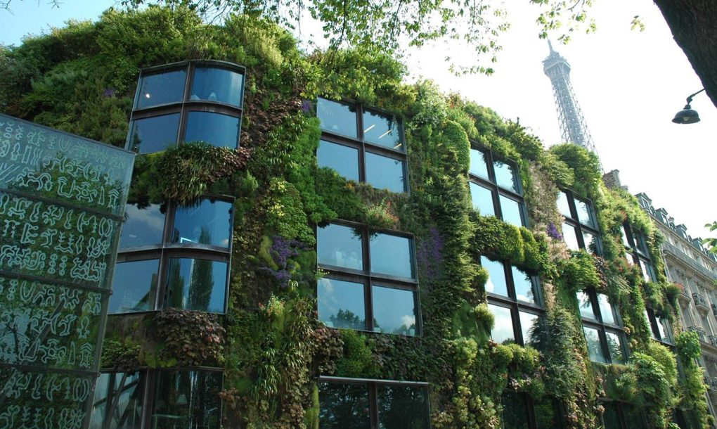 Urban Paris Garden Facade House