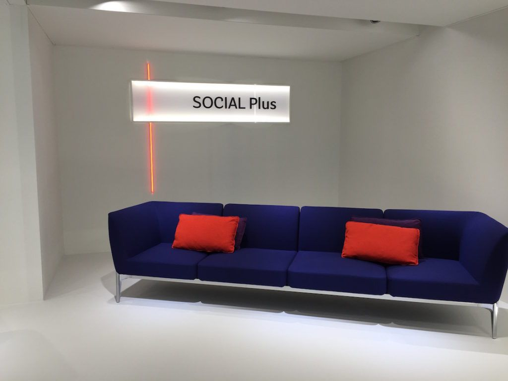 A bright purple sofa is accented by two simple pillows.
