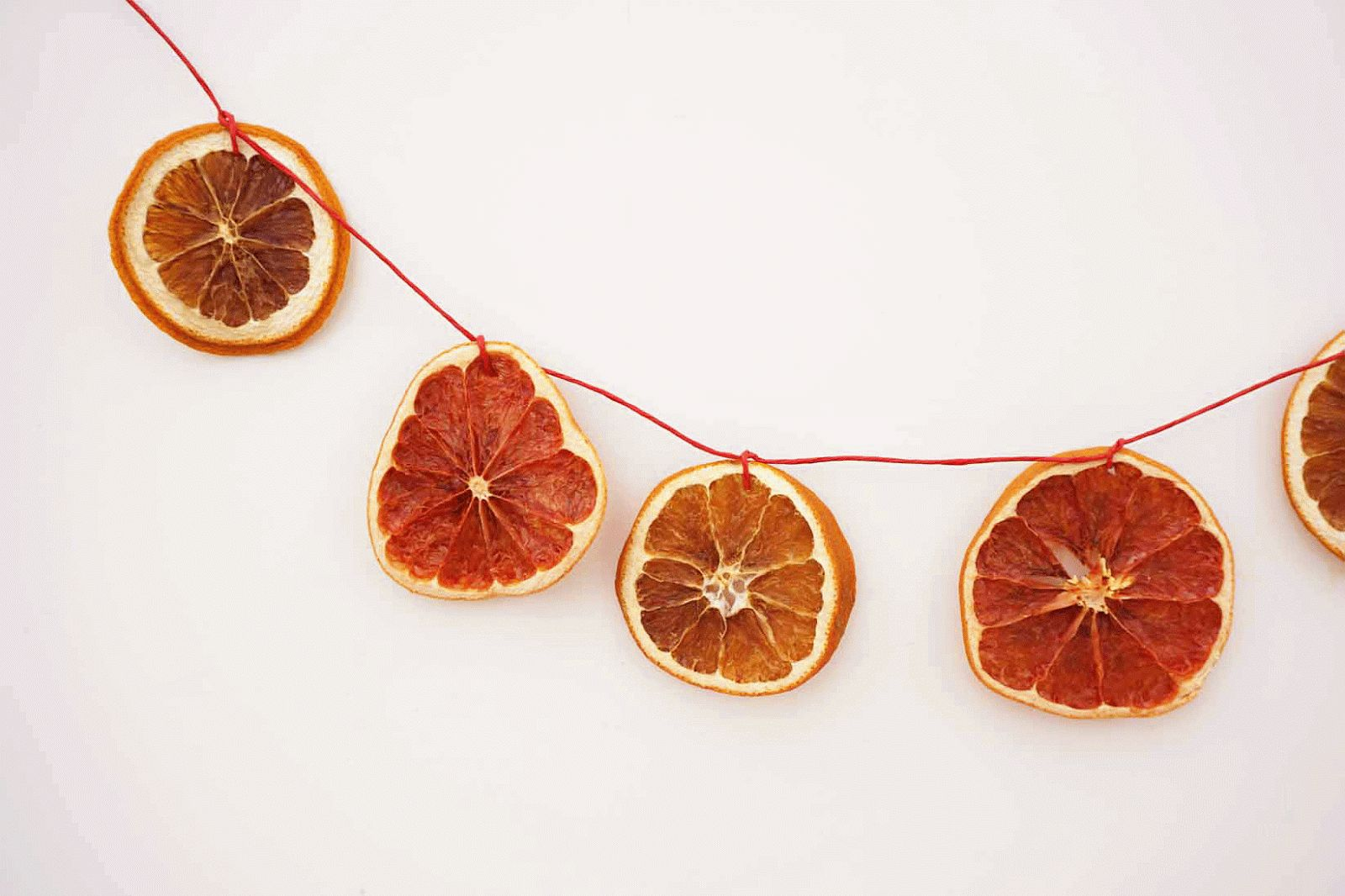 Citrus dried Garland