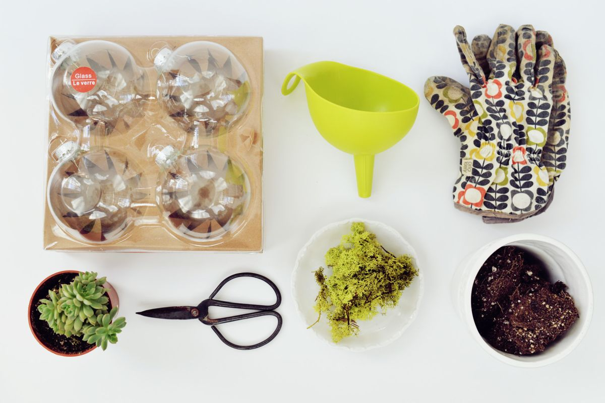 DIY Terrarium Ornaments Suppliers
