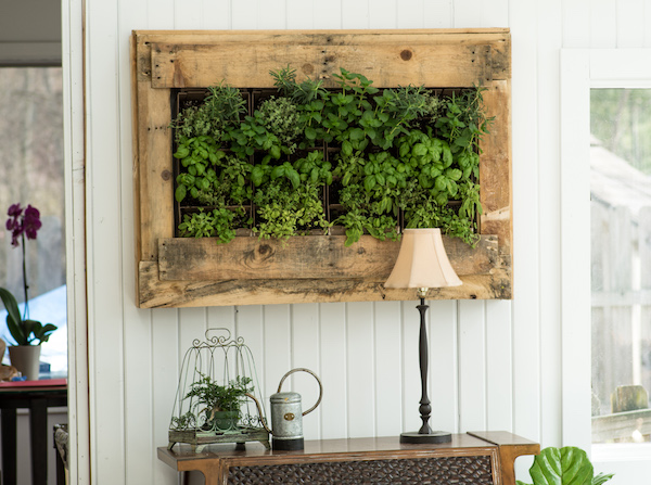 DIY wall planters for a green décor