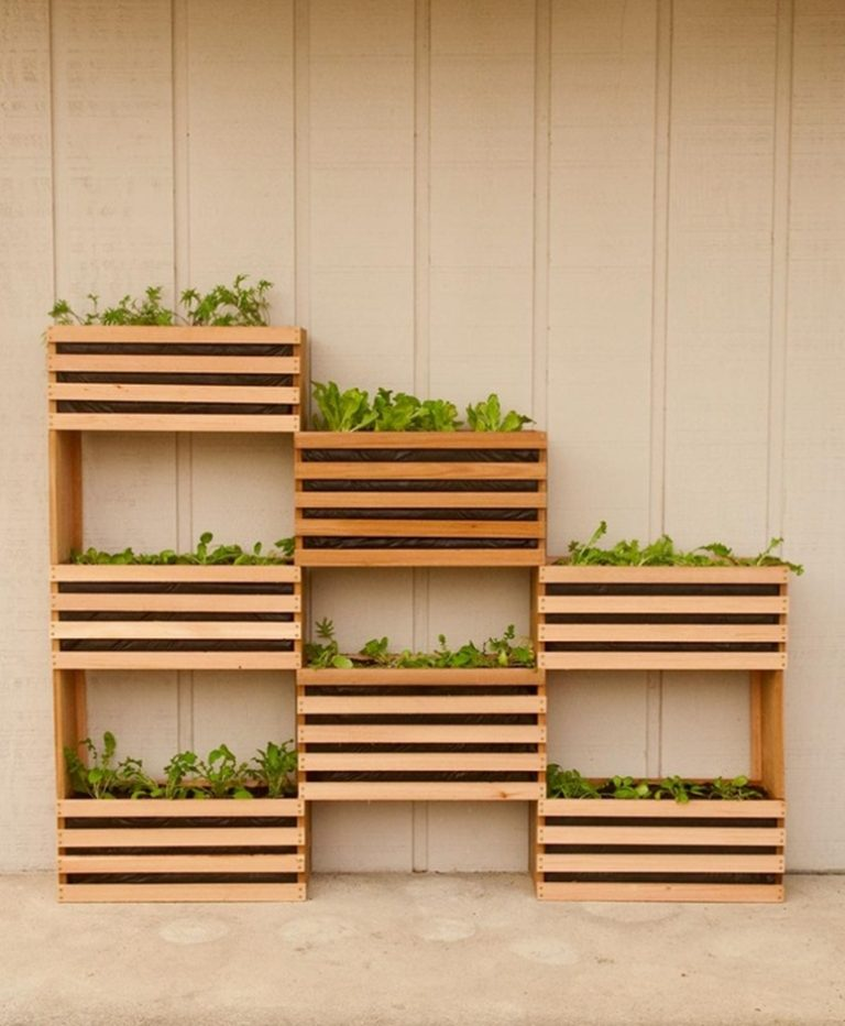 Style Your Very Own Vegetable Garden