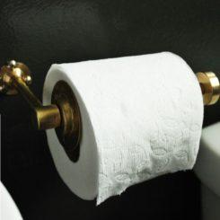 Charming DIY Chic Brass Toilet Paper Holder Ideas