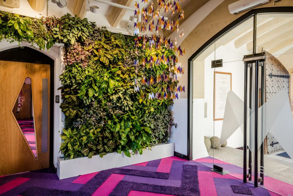 Green Walls – A Cool Design Accent For Offices With Personality