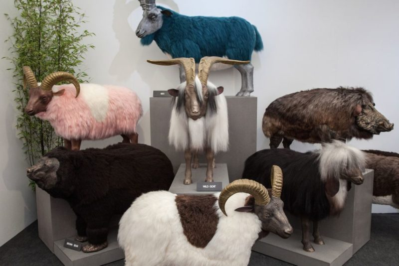 A Magical Realm Of Animal Decorations Breaths Life Into Your Home