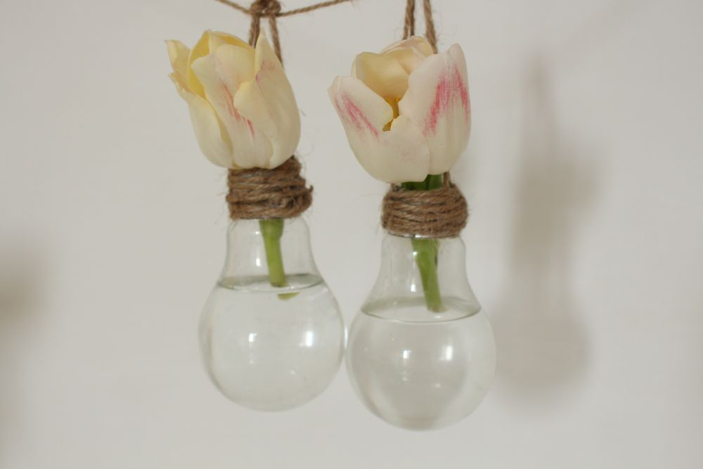 View in gallery & DIY a Hanging Vase from a Light Bulb