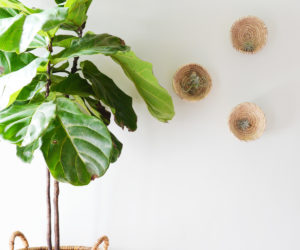 DIY Wall Basket Planters