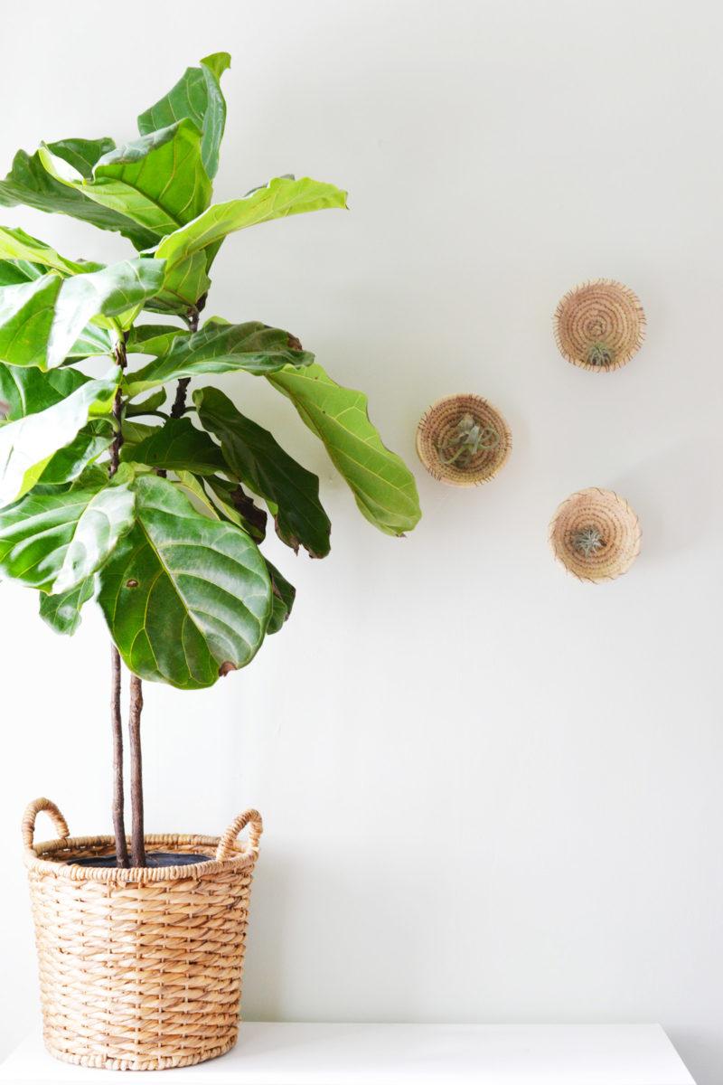 DIY Wall Basket Planters