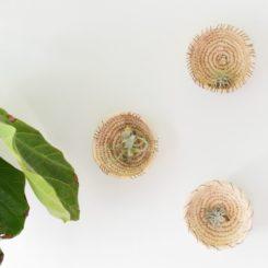 DIY Woven Baskets Into A Plant Wall Decor