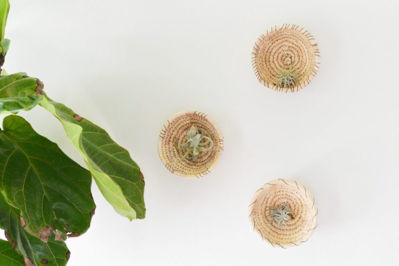 DIY Woven Baskets Into A Plant Wall Decor