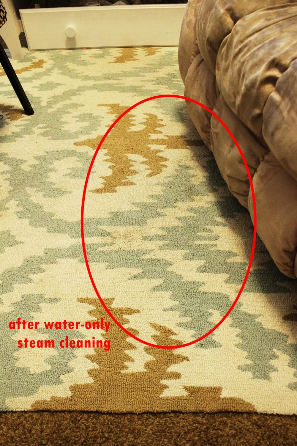 Area Rug Cleaning Safe And Natural
