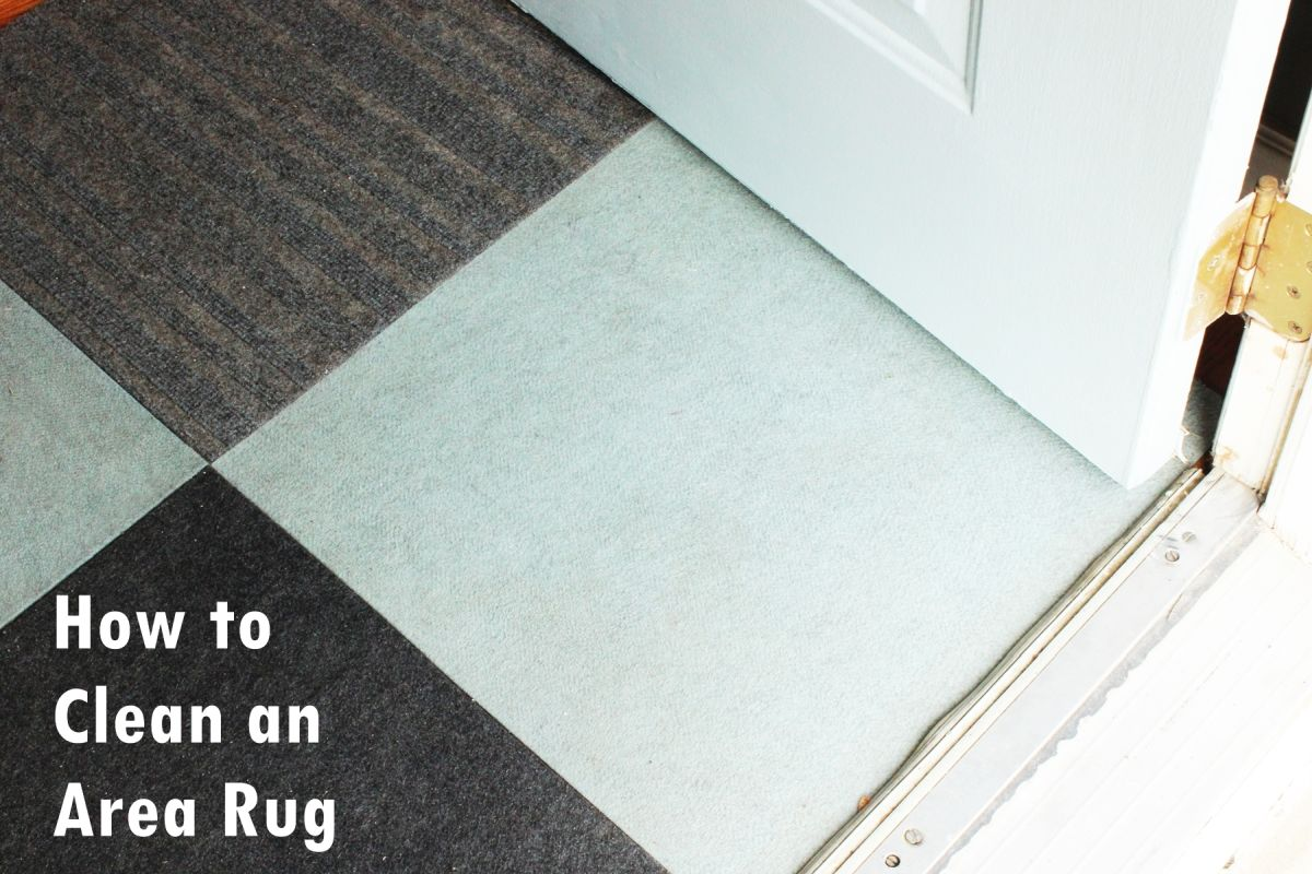 Area Rug Cleaning Safe And Natural Ideas