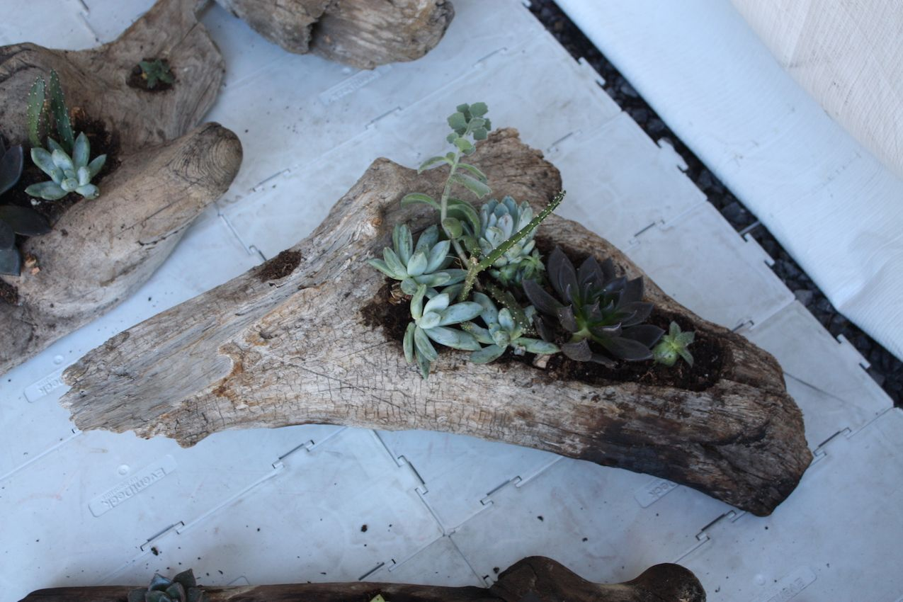 A natural wood planter, like this one by Jim Szymanski, is organic as well as rustic.
