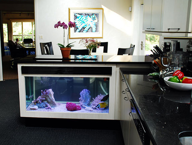 Your Kitchen Peninsula Can House Your Pets
