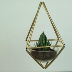 Trendy Hanging Plant Holder Made From Plastic Straws