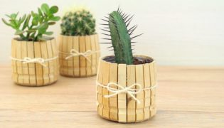 Recycle Simple Cans Into Cute Clothespin Planters