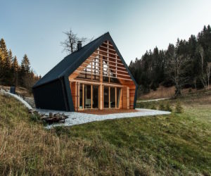 Cozy Wooden House Offers Shelter In A Large Forest Clearing