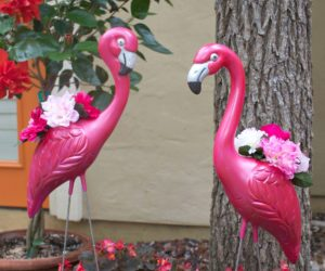 Make Flamingo Planters for Your Summer Decorating