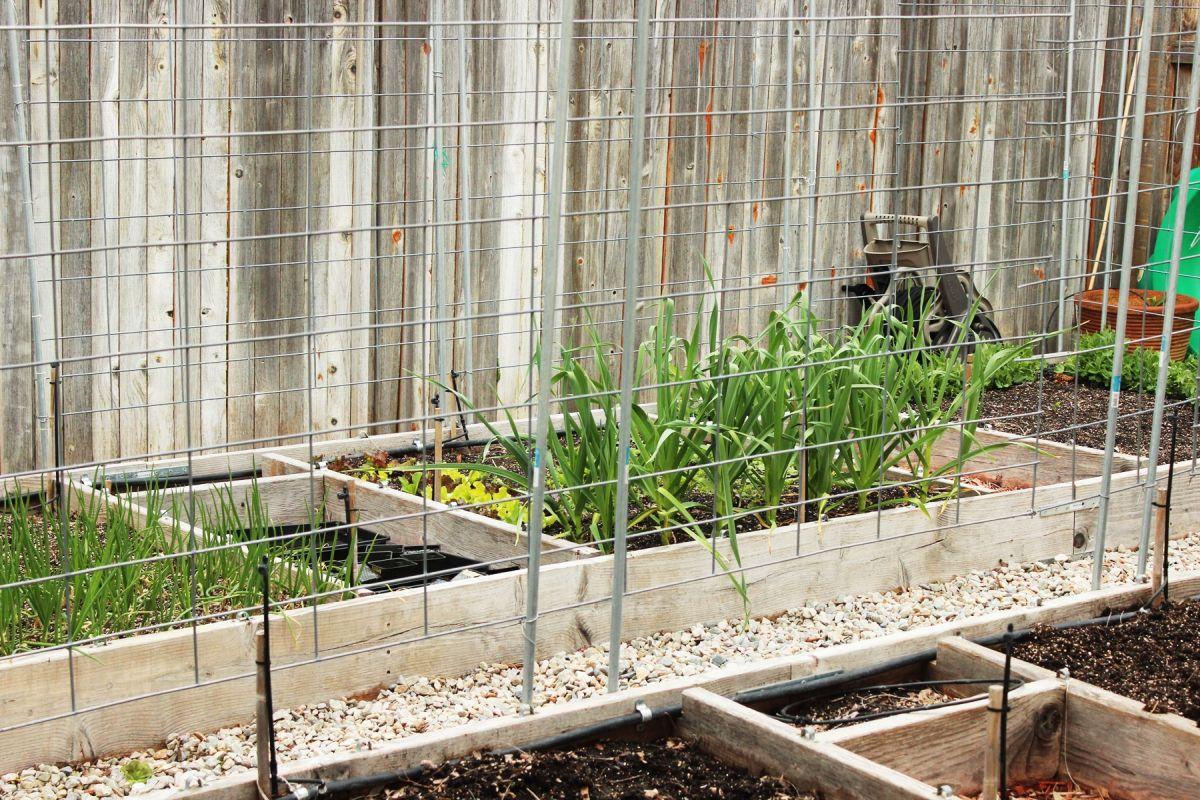 100 raised planter box plans small vegetable garden box dec