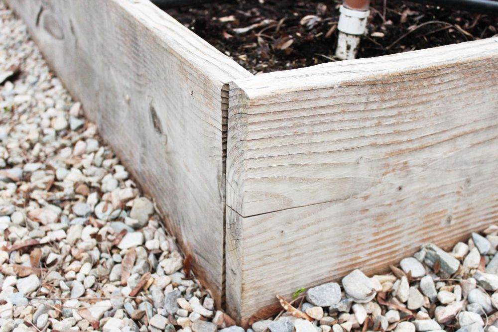 RAISED BOX GARDEN: BUILDING PHASE