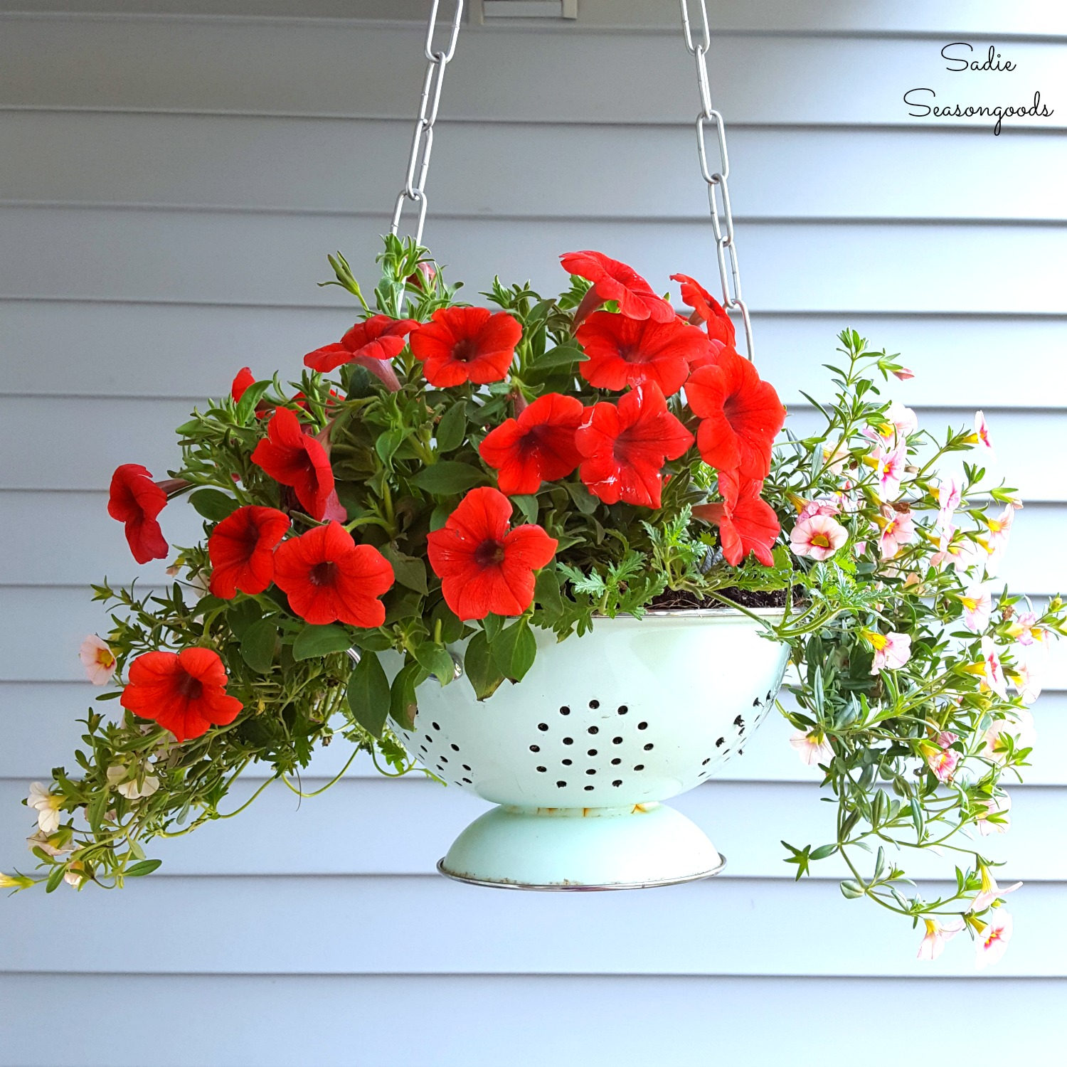 Colander hanging porch