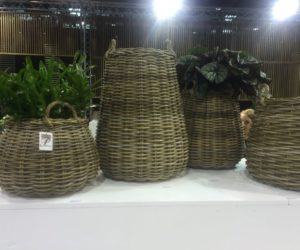 Platers From Wicker Baskets
