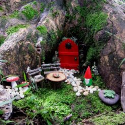 Fairy tree trunk red door
